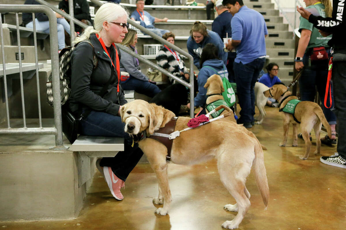 Melissa Padron, a graduate of Harlandale High School, sits with Cameo, her eight-year-old labrador retriever guide dog, at a Guide Dogs for the Blind meeting at Madison High School on Sunday, March 31, 2019.