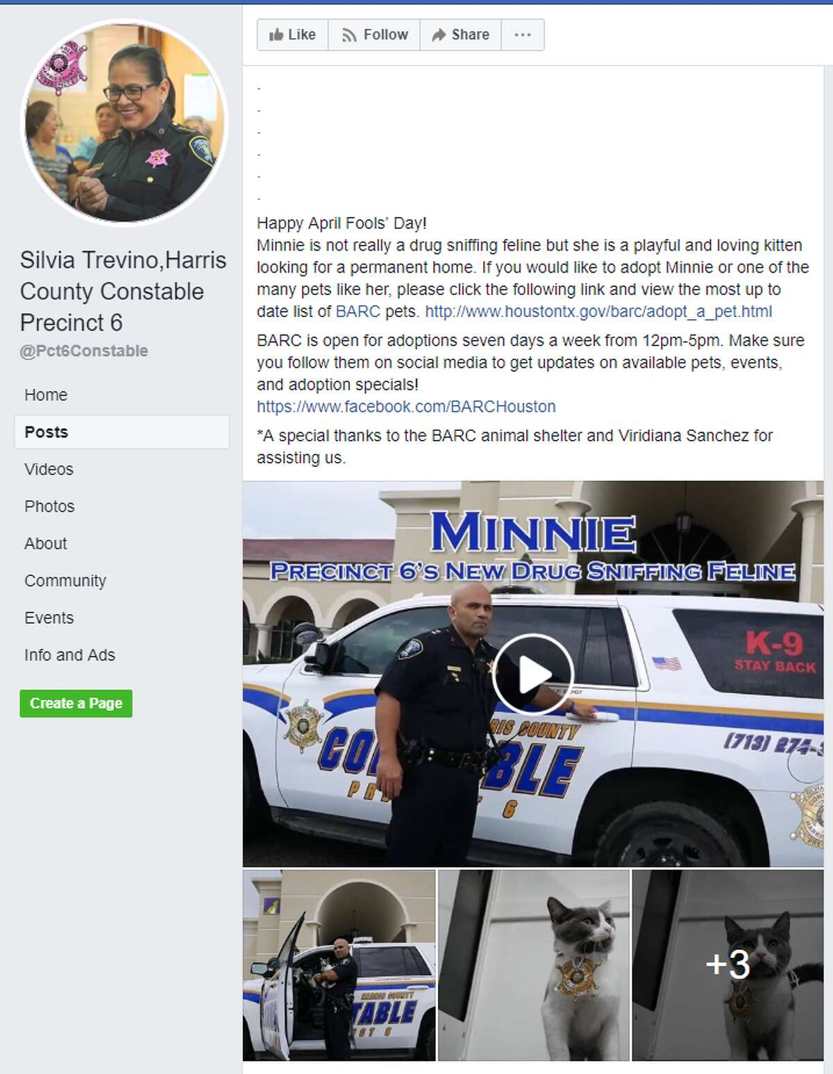 """Harris County Constable Precinct 6 posted on Facebook """"Due to the success of our drug detection K9 Ka'ro, Precinct 6 has decided to add a drug-sniffing feline to our team. """"Minnie"""" will be the first drug-sniffing feline to work for a Harris County Law Enforcement agency and we couldn't be more honored to have her."""""""