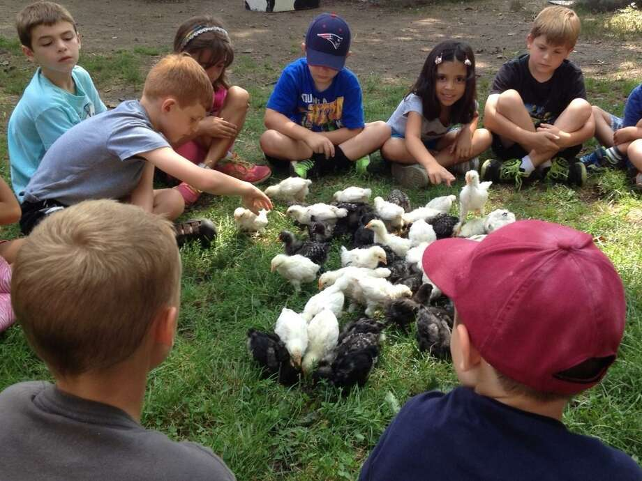 Flanders Nature Center is holding a week of activities for school children during spring break. Photo: Contributed Photo