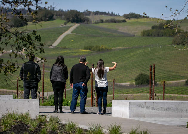 Four wineries for amazing views, Cabernet on Mount Veeder