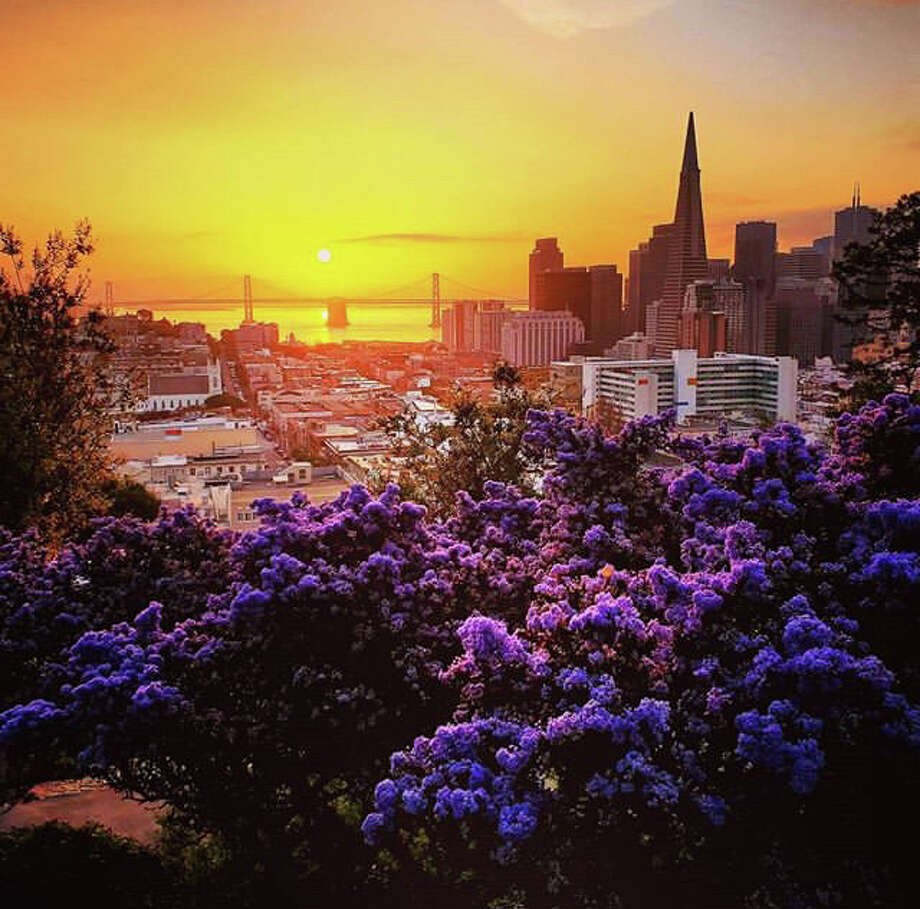 Sunrise at Russian Hill in San Francisco by @stuinsf Photo: Instagram / Stuinsf
