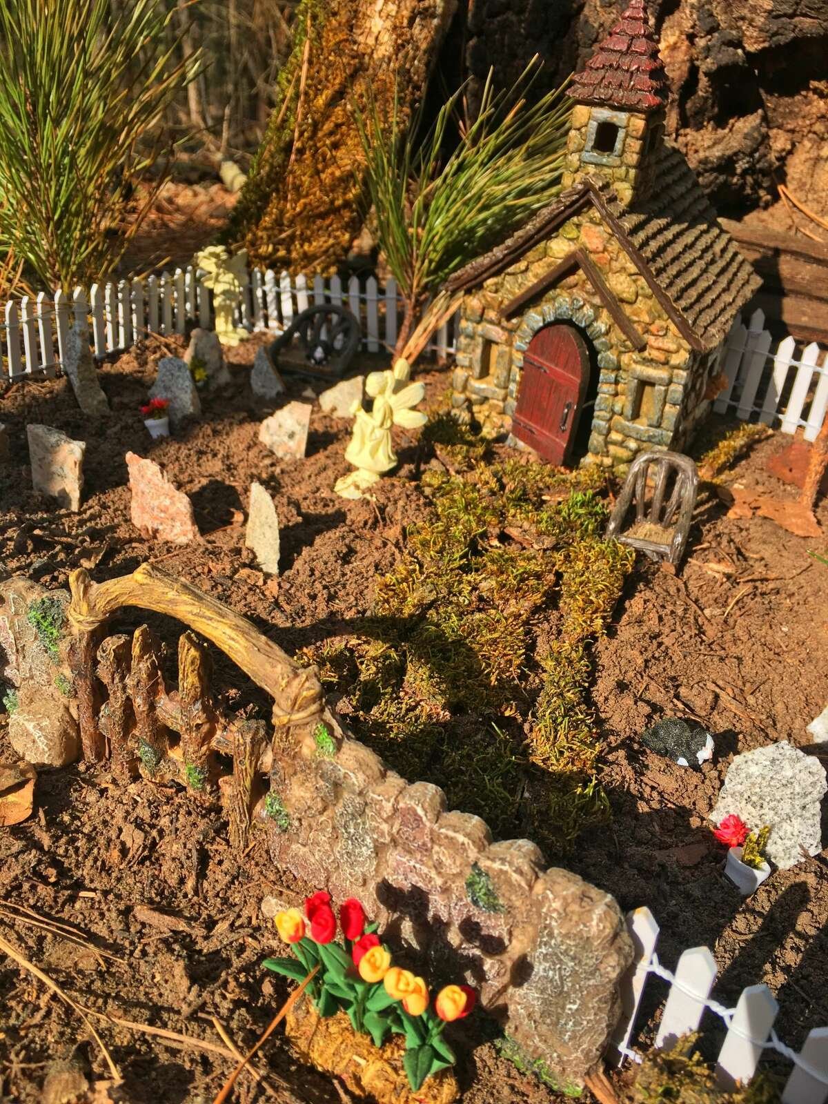 The Fairy Garden Project is on display in Palestine, Texas'Davey Dogwood Park.