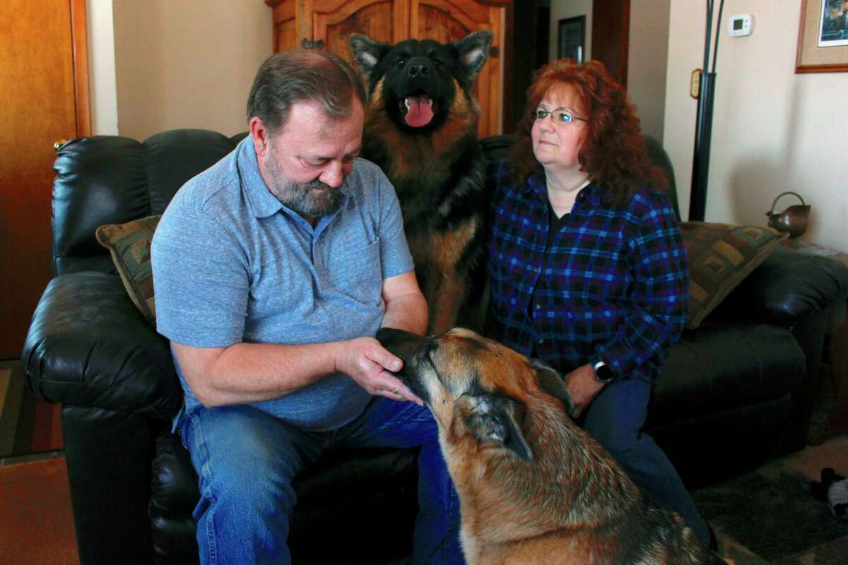 In this Feb. 21, 2019, photo, Joe and Deb Colgan sit with their German shepherds Gracie, on the floor, and Takaani, on the couch, in their home in Oconomowoc, Wis. The Colgans started feeding their two previous dogs raw meat seven years ago and continued with Gracie and Takaani because they say they have less health problems and cleaner teeth. U.S. pet owners are increasingly feeding raw, freeze dried or lightly cooked meat and vegetables to their dogs and cats. (AP Photo/Carrie Antlfinger)