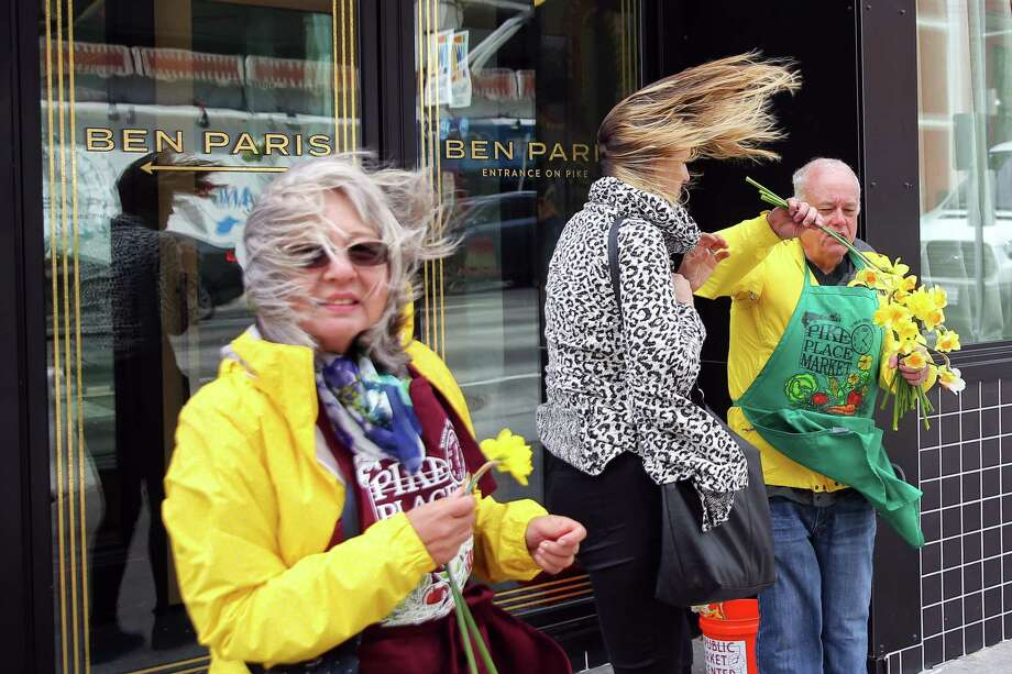 Volunteers Allen and Trudy Johnson brave the strong winds at the corner of Pike Street and 2nd Avenue as they hand out daffodils to passersby near Pike Place Market, Wednesday, April 3, 2019. The annual Daffodil Day usually happens on the first day of spring but this year took place a few days later to give the flowers a few more days to bloom.   (Genna Martin, Seattlepi.com) Photo: Genna Martin, Genna Martin/Seattlepi / GENNA MARTIN