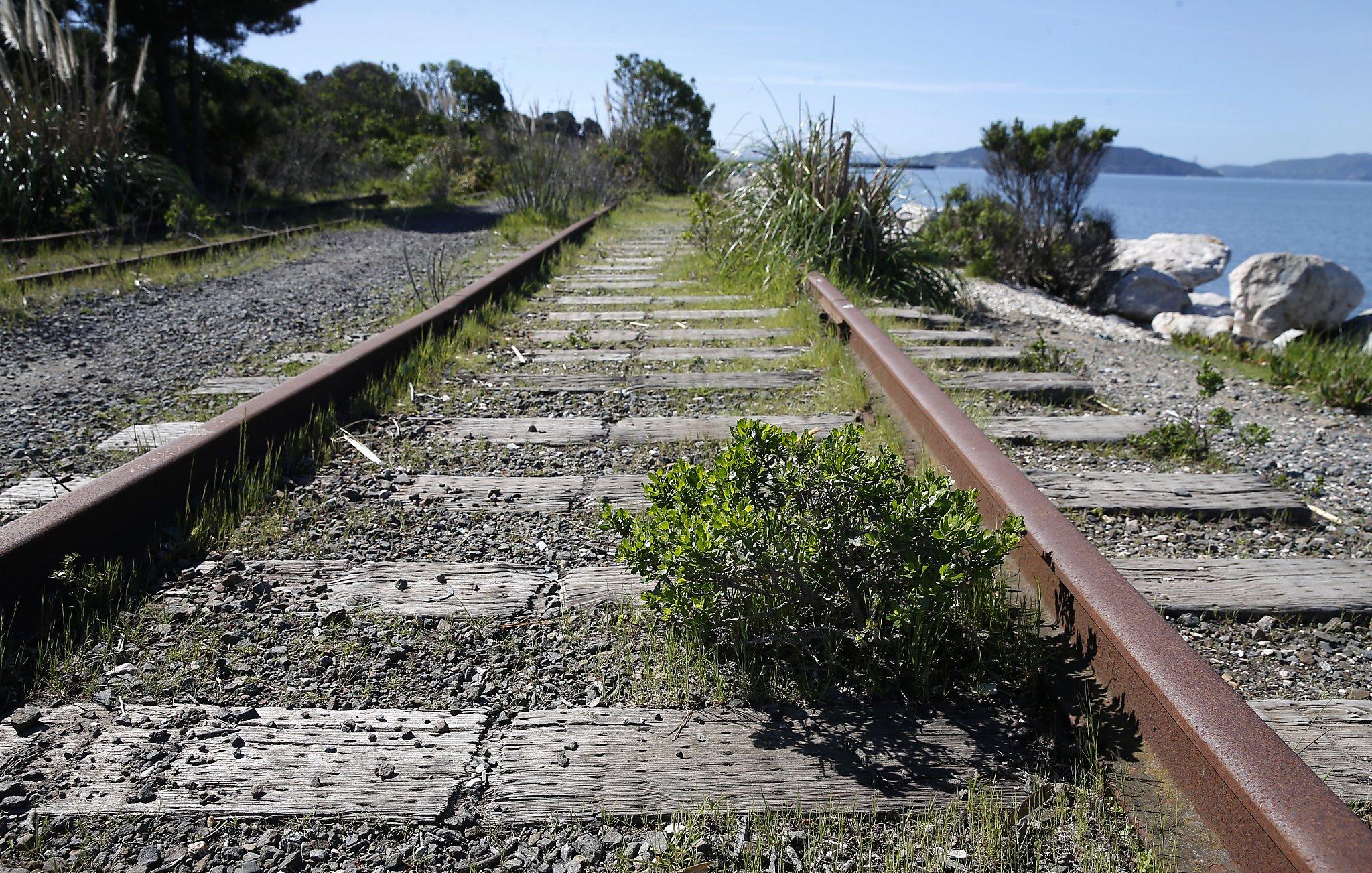 Woman walking on tracks struck, killed by freight train in Martinez