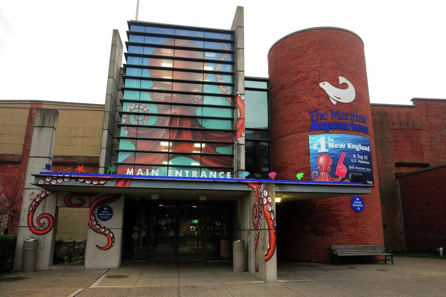 Exterior of the Maritime Aquarium in Norwalk. Photo: Ned Gerard / Hearst Connecticut Media / Connecticut Post