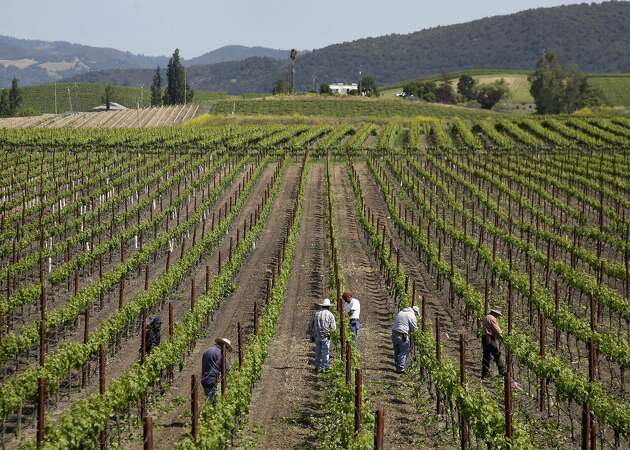 The Wine Institute is leaving San Francisco for Sacramento