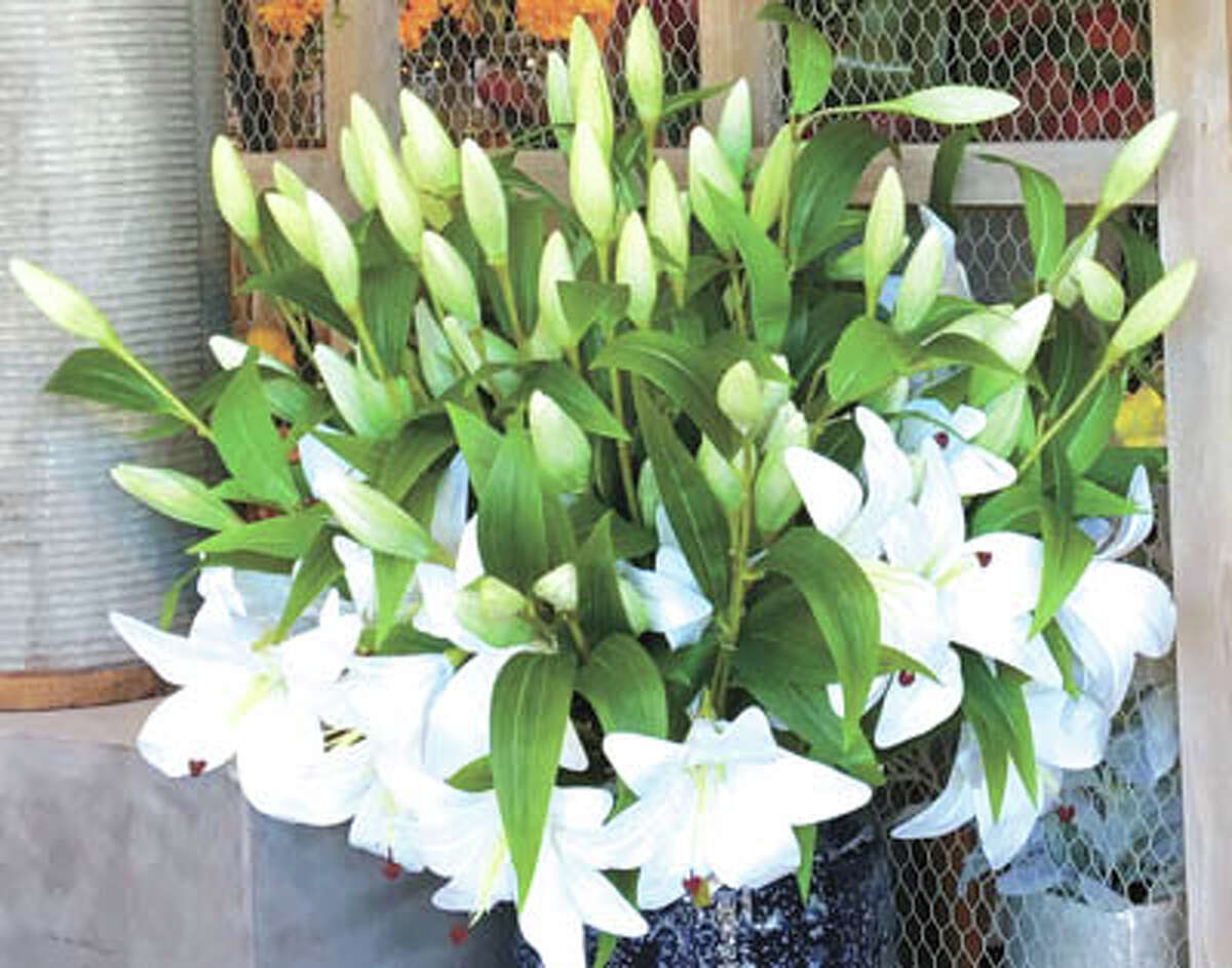 Consider the lilies and the other gentle flowers of Easter when you think of arrangements and mums. Call Flowerland today and let their floral artists create a masterpiece for you. Their number is 682-1634.