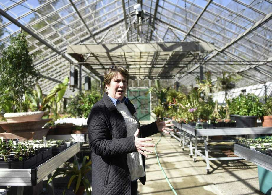 Bartlett CEO Jane von Trapp shows plants starting to bloom in the greenhouse at Bartlett Arboretum & Gardens in Stamford on Thursday. The arboretum, which is owned by the city and run as a separate agency, is fighting for money it needs to build a new and improved greenhouse conservatory to replace its current 40-year-old greenhouse. Photo: Tyler Sizemore / Hearst Connecticut Media / Greenwich Time