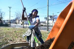 Sixth-grader Felicia Silver, 12, rakes garden soil into a raised bed during construction of a new school garden at Beardsley School in Bridgeport on April 3.