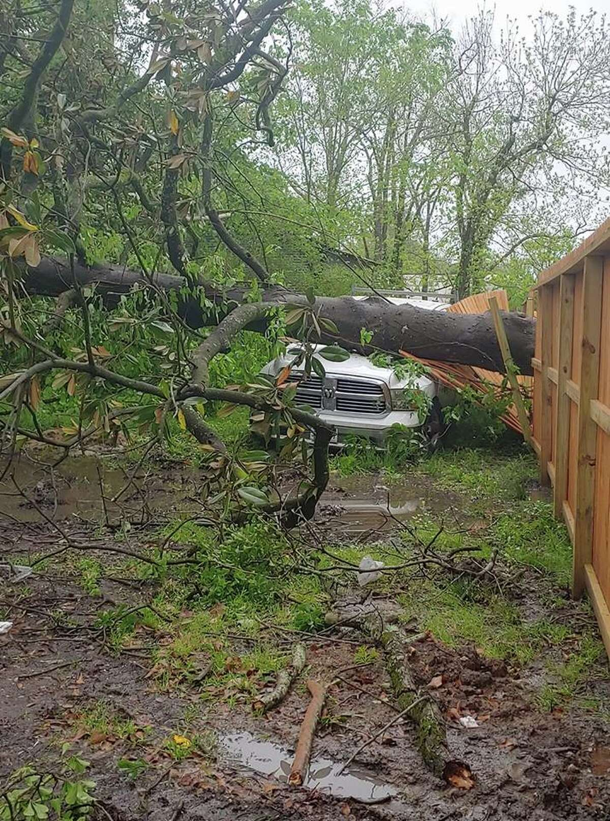 Dayton residents said fallen trees were a common site from the storm, with some hitting parked cars. Photo courtesy Jennifer Greak Cannaday >>> Click through to see more damage throughout the area