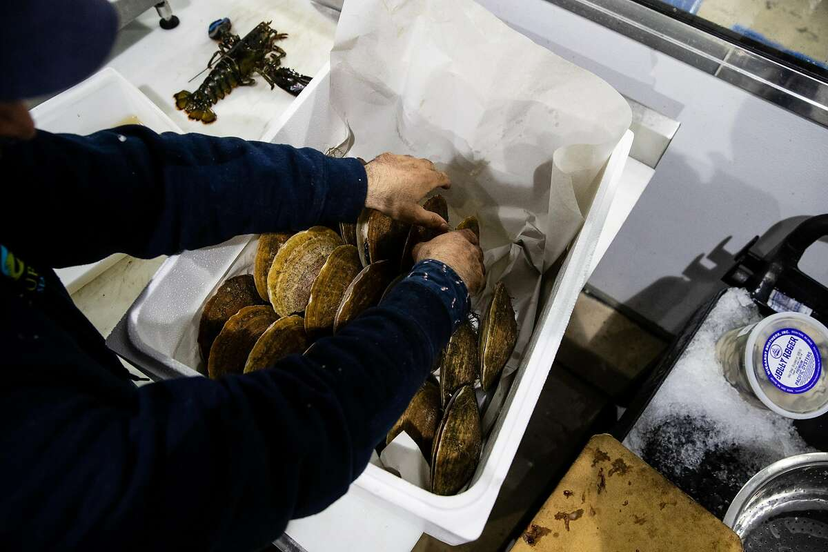 Eric Kiefer packs a box of live scallops at Four Star Seafood in San Francisco, Calif. on Wednesday, April 3, 2019.