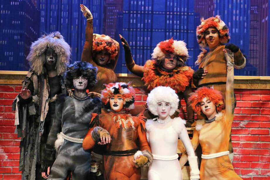 "Brooklynn King, second from the left, received a best supporting actress nomination in this year's Tommy Tune Awards for her role in Pearland High School's production of ""Cats."" That was one of five nominations the show received, with others for best musical direction, best ensemble, featured performer (Savannah Brown) and scenic design. Also in the show were, back row from left: Zach Nelson, Natalia Leslie, Taylor Stowers and Davian Raggio; front row, left from King, Keagan Greer, Alexandra Hattan and Jael Davis."