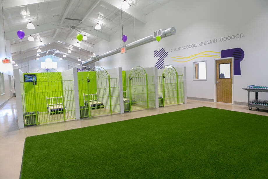 PetSuites of America will open a location at 8320 Copper Creek in Missouri City this summer. Services include dog and cat boarding, grooming and day care. Photo: PetSuites Of America
