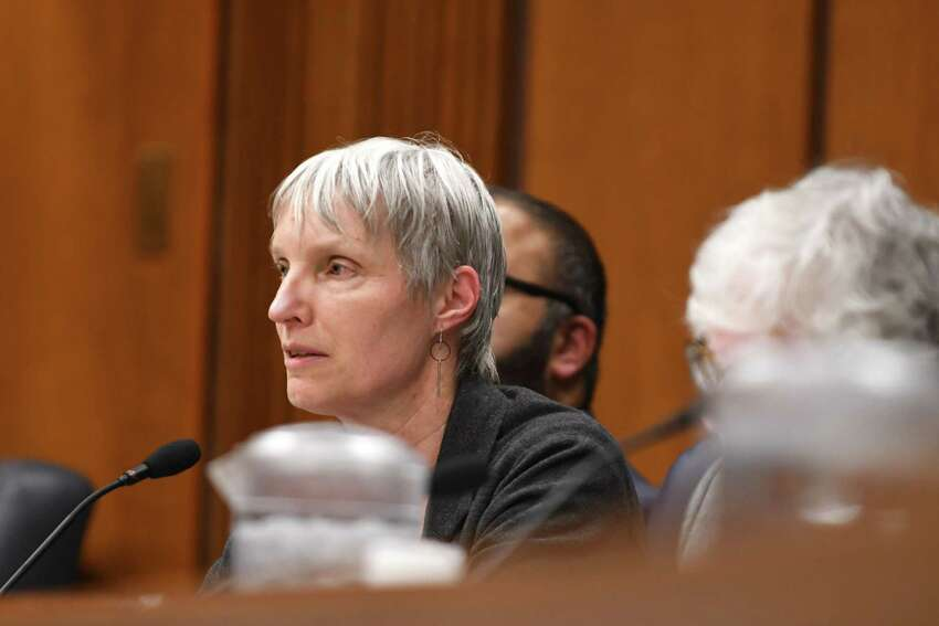 Sen. Rachel May questions school administrators during a Senate hearing on the oversight of for-profit colleges and schools on Wednesday, April 10, 2019, at the Legislative Office Building in Albany, N.Y. (Will Waldron/Times Union)