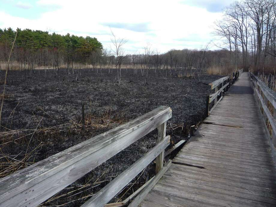 This photo of the boardwalk that makes up part of the trail at Beaver Brook Trails on West Avenue in Milford, Conn. was taken following a 2012 brush fire that destroyed most of the wooden structure. Photo: Steven Johnson / Contributed Photo