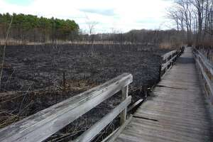 This photo of the boardwalk that makes up part of the trail at Beaver Brook Trails on West Avenue in Milford, Conn. was taken following a 2012 brush fire that destroyed most of the wooden structure.