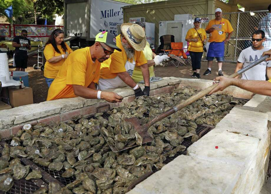 100,000 oysters