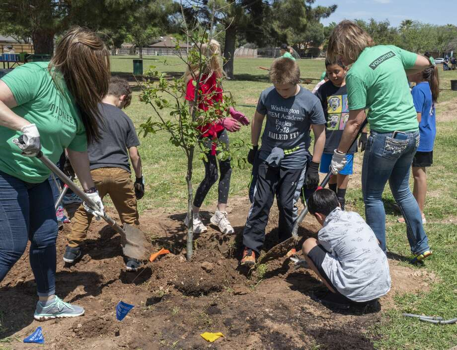 Parker Elementary fourth graders join forces with Pioneer Natural Resources volunteers, KMB and Texas Trees Foundation 04/15/19 to plant 25 new trees in Trinity Park. Tim Fischer/Reporter-Telegram Photo: Tim Fischer/Midland Reporter-Telegram