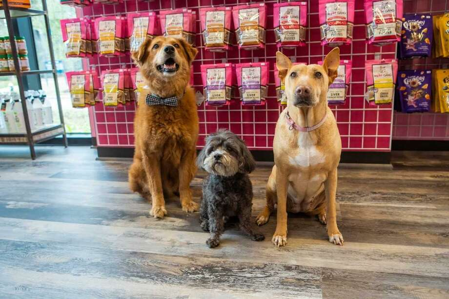 Woof Gang Bakery & Grooming, a new store in the Creekside Park Village Center, sells pet products, pet food and provides full-service grooming and a self-wash room for man's best friend. Photo: Courtesy Photo / Courtesy Photo