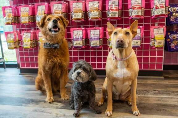 Woof Gang Bakery & Grooming, a new store in the Creekside Park Village Center,sells pet products, pet food and provides full-service grooming and a self-wash room for man's best friend.