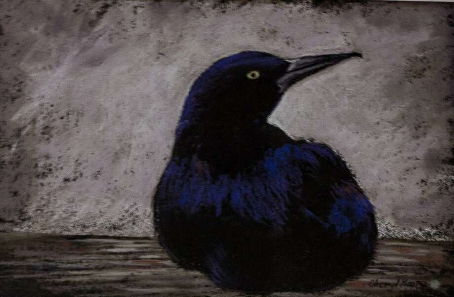 "The Kent Art Association has announced the winners of its spring juried show, which will run through May 12. Cheryl L. Moore of Kent was presented the Award for Pastel for ""Crow,"" above. Photo: Courtesy Of Kent Art Association / The News-Times Contributed"