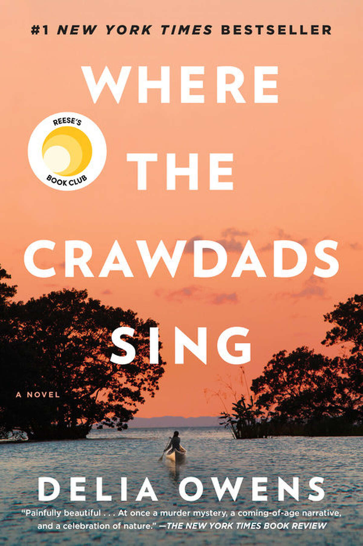"""Click through to see the Top 20 books on the Times Union Library Check List, a compilation of the most checked-out books at Capital Region Libraries. #1 : """"Where The Crawdads Sing"""" Total checkouts: 845 Made the Top 3 at 17 Capital Region libraries. Where the Crawdads Sing"""