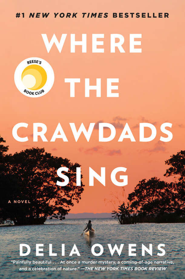 Click through to see the Top 20 books on the Times Union Library Check List, a compilation of the most checked-out books at Capital Region Libraries.