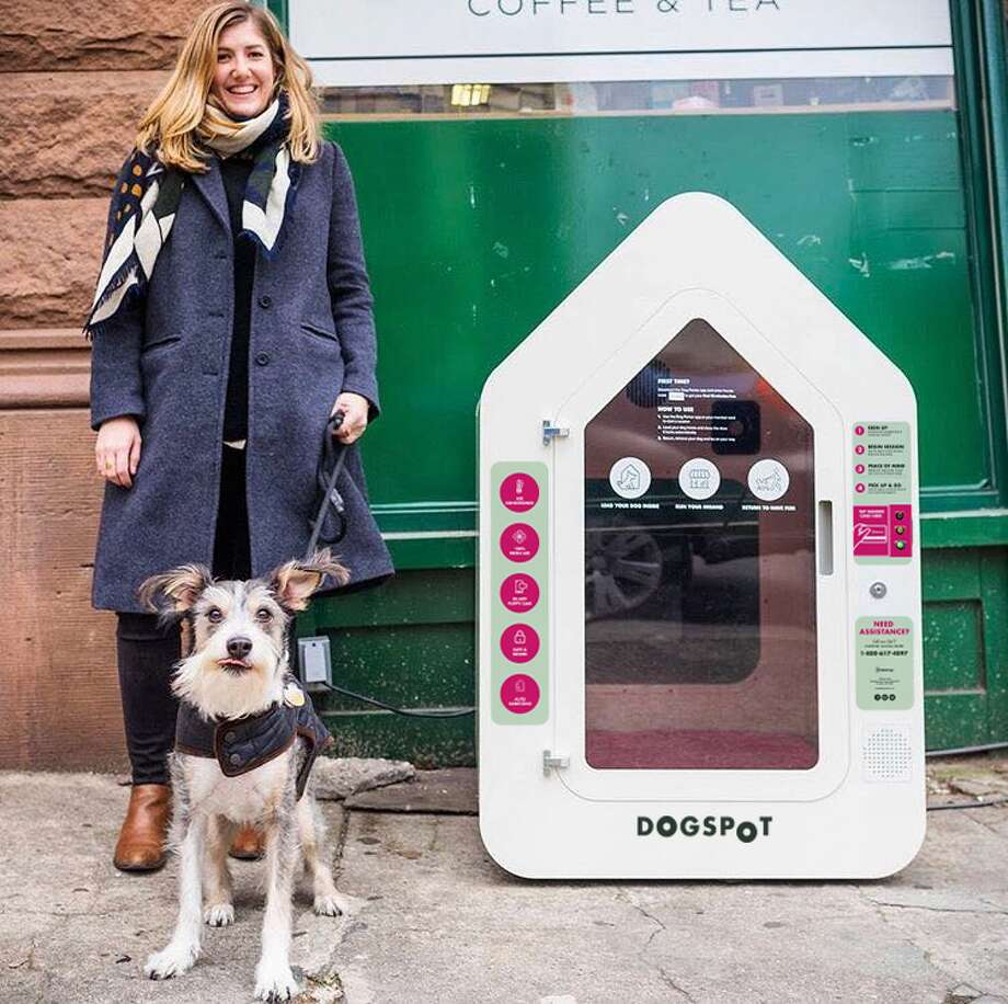 Eight of these high-tech, air conditioned dog houses will soon be found at QFC locations throughout the greater Seattle area. Photo: Courtesy DogSpot
