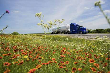 9,300 gallons liquefied natural gas is being delivered by an 18-wheelers from George West about 130 miles to the Colombia-Solidarity International Bridge in Laredo past wildflowers on U.S. Highway 59 on Tuesday, April 2, 2019, near George West.