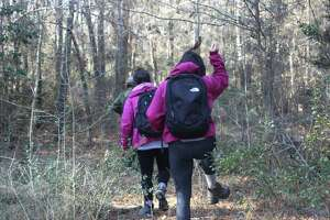On Saturday, Big Thicket park rangers will offer Pitcher Plants and Pines,a family  friendly 1 mile walk on the Sundew Trail, where visitors will see a variety of  carnivorous plans, as well as longleaf pines and wildflowers.