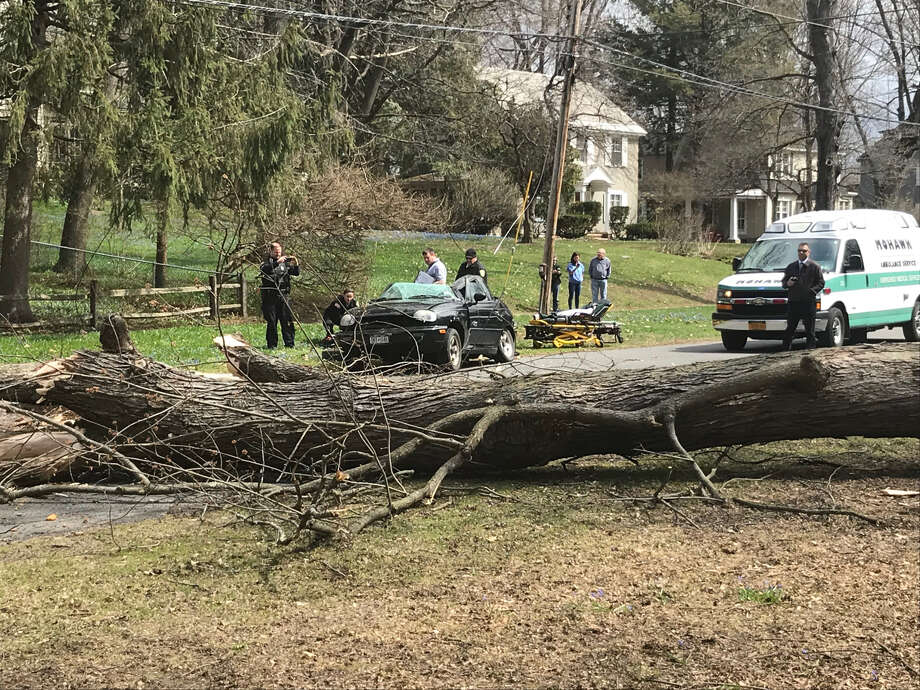 A tree collapsed on Sunnyside Avenue in Scotia, crushing this car but sparing the driver from all but a scratch to the face on Thursday, April 18, 2019. Photo: Scotia Police Department