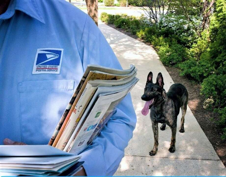 83763b5a628c5 Houston top city with dog attacks on postal workers