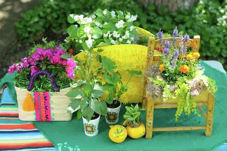 Five repurposed Fiesta items that John Bloodsworth has made into colorful, creative planters.