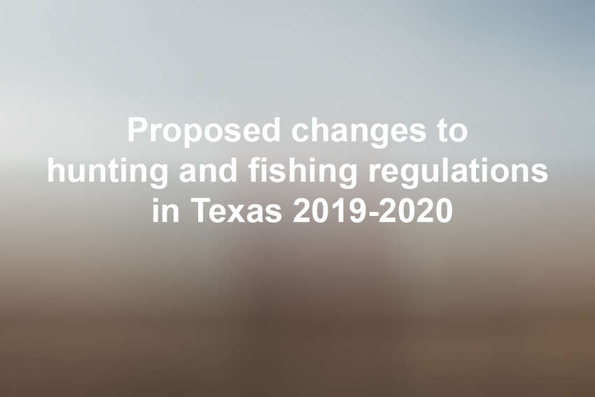 Click through the slideshow to see the proposed regulations for saltwater fishing, freshwater fishing and hunting for 2019-2020.