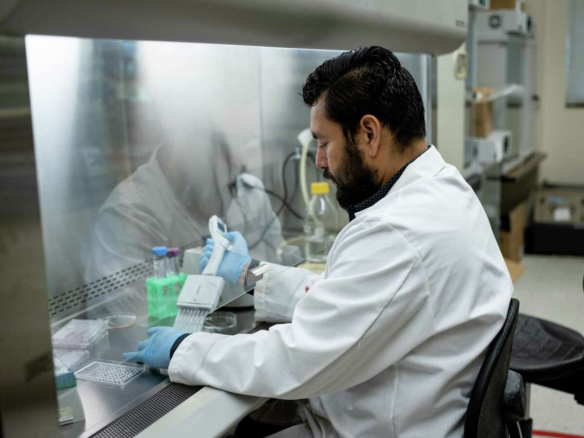 Post-doc researcher Roberto Vasquez cleans a culture tray at UTSA on Thursday, April 18, 2019. Dr. Jose L. Lopez-Ribot's lab is researching Candida Auris, a fungus and emerging pathogen that has proven highly resistant to antifungal drugs. Dr. Lopez-Ribot's team is researching a new treatment to combat this fungus using both existing drugs and nanoparticles.