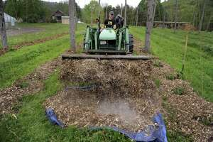 File photo of mulch spread on the beds of hops at Camps Road Farm in Kent, Conn., Thursday, May 22, 2014, where hops are being grown for the Kent Falls Brewing Company.