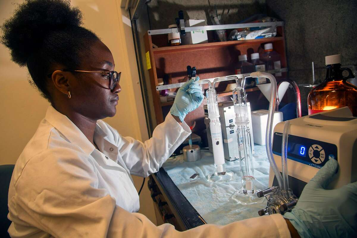 Riverside CA - April 12, 2019: Graduate student Ester Omaiye researches the effects the Juul gaping products at UC Riverside on Friday April 12, 2019, under the direction of Dr. Prue Talbot. The two are part of team studying the health effects of vaping. An emerging body of evidence indicates that vaping can damage the human lung cells, and links it to higher risk of heart attaches, stroke, respiratory problems and lower immune responses. (Ana Venegas / Special to the Chronicle)