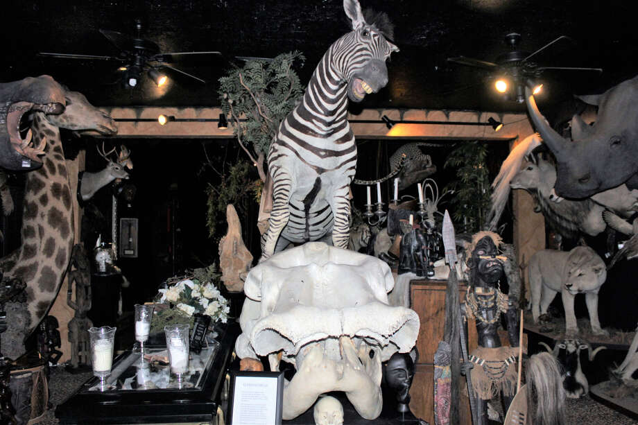 PHOTOS: Gothic Victorian jewelry, animals in specimen jars, hissing cockroaches, white peahens in an atrium, and exotic taxidermy await you at The Wilde Collection.