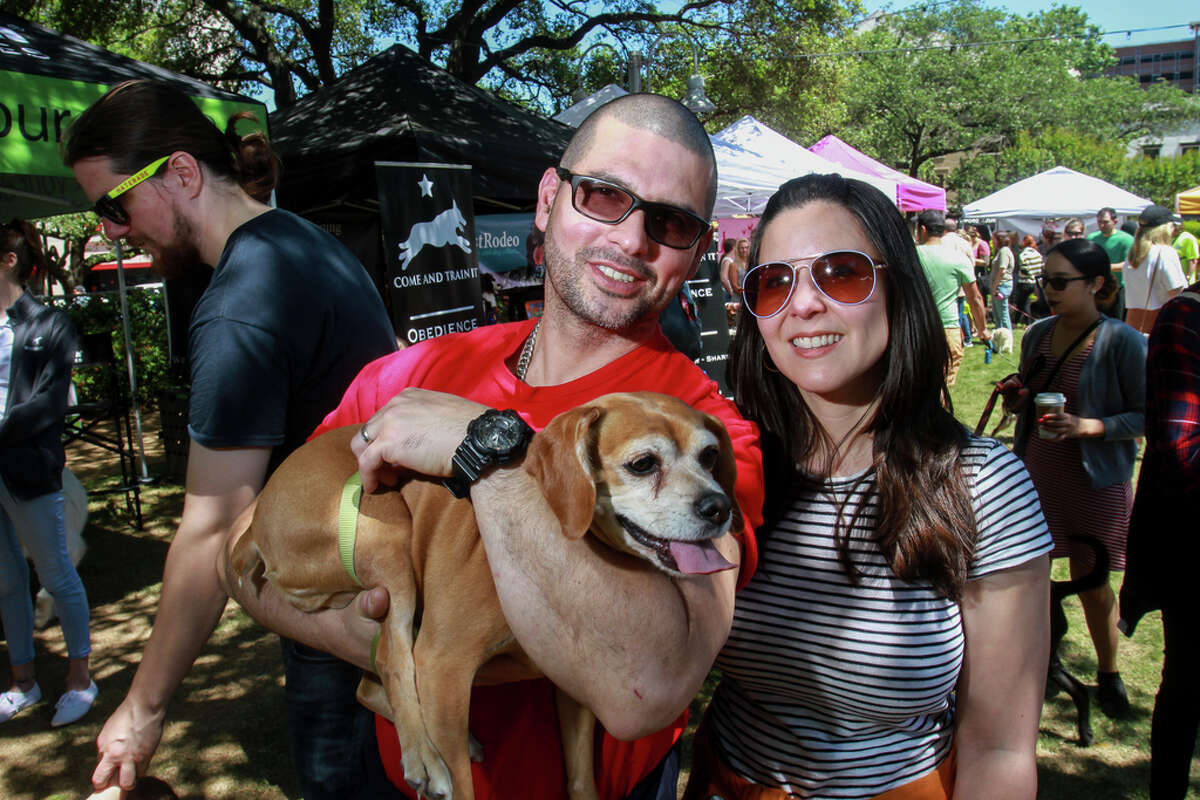 """Houston dog lovers are in for a real treat next year when a new dog festival toting itself as the """"Disneyland for Dogs"""" makes its way to the Bayou City. (File photo is from an unrelated event.)"""