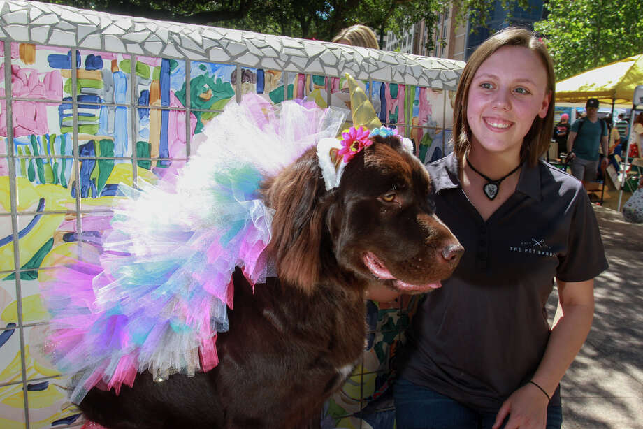 """Nichole Bryant with """"Whiskey"""" at Puppies for Breakfast, the largest dog festival in Houston. Photo: Gary Fountain, Contributor / © 2019 Gary Fountain"""