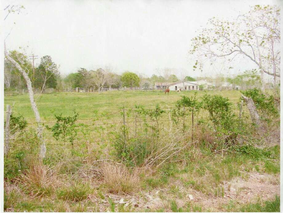Dickinson pasture owned by Edward Harold Bell in the mid 1970s. Photo: Lise Olsen / Houston Chronicle Photo Library / scanned image