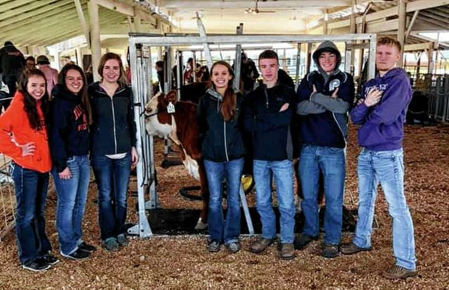 Franklin FFA's judging team recently finished in third place overall out of 12 teams competing in the Section 13 Livestock Judging CDE. Tean member Samantha Mies finished fourth overall, Amber Mies was 16th overall and Ethan Hansell was 17th overall. Franklin FFA also placed third in the Section 13 Horticulture CDE and participated in the fitting contest. Franklin FFA members participating include Amber Mies (from left), Saamantha Mies, Kayla Keeton, Mollie Allen, Levi Brown, Luke Bergschneider and Ethan Hansell. Photo: Photo Provided