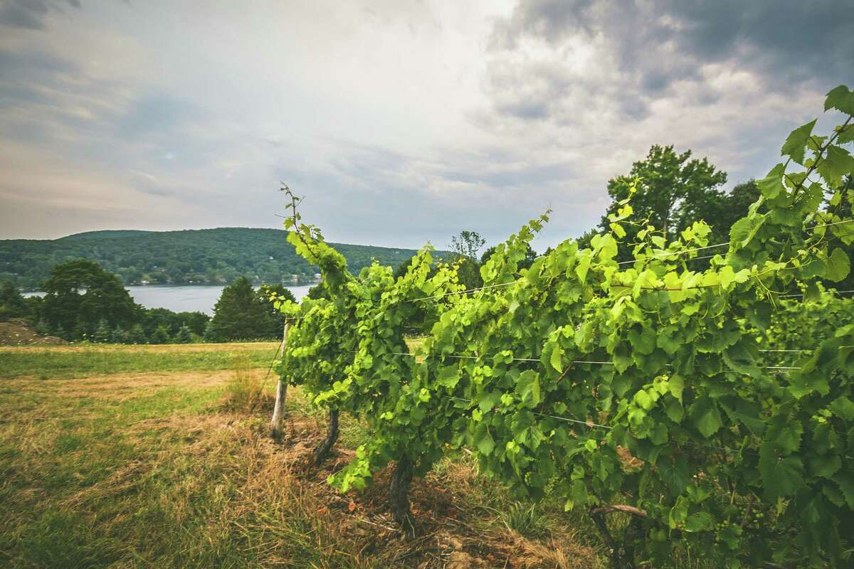 The Hopkins Vineyard Sip, Shop & Be Local will highlight the best in local goods and foods on Saturday. Find oiut more.