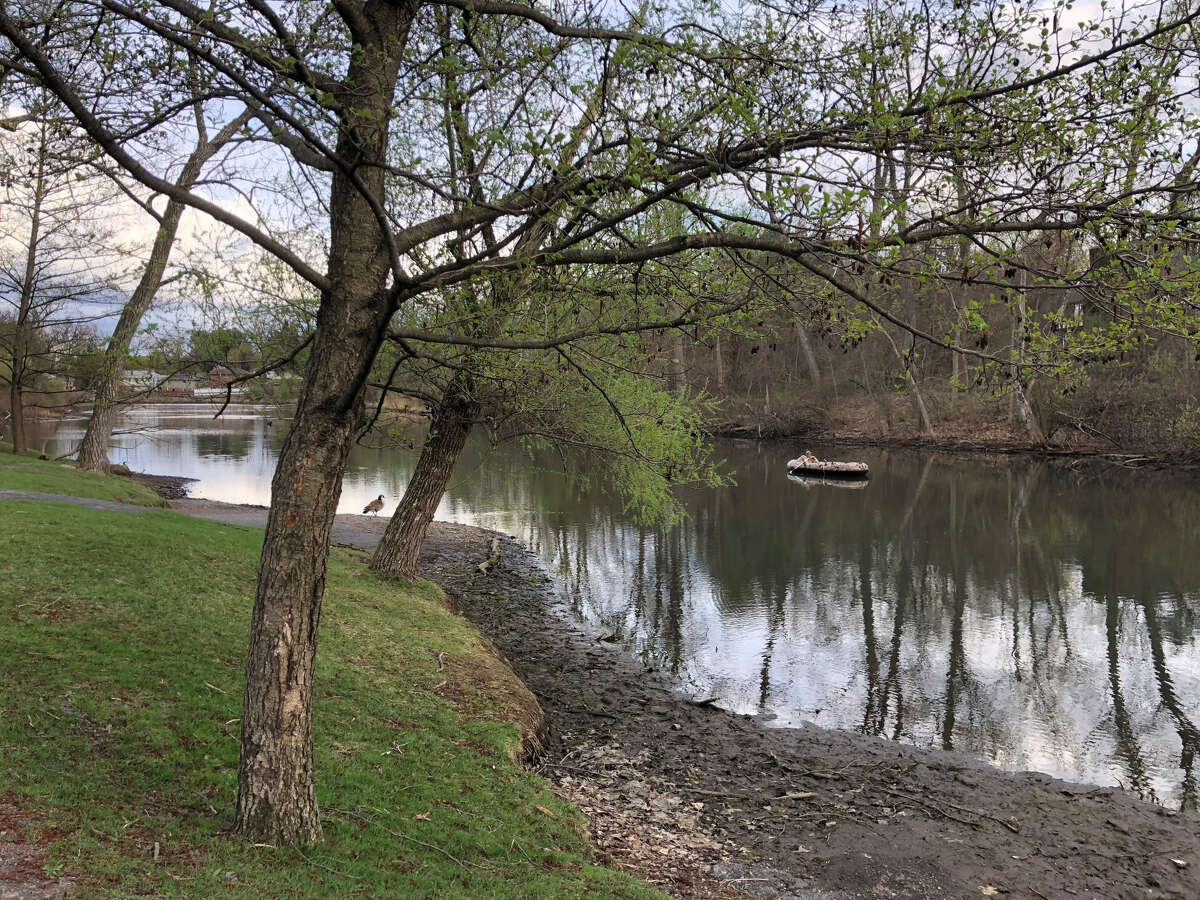 Residents were concerned when Buckingham Pond, in Albany, had noticeably low water levels on April 21, 2019. Officials said the pumping system malfunctioned, fixed the problem and said the pond will fill back up as it rains.