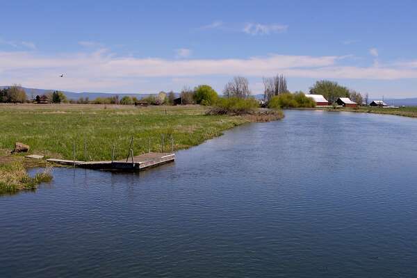 Your best bet for trout fishing: Shasta County - SFChronicle com