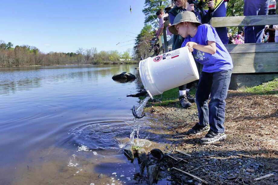 Tyler Loukmas, 6, of Clifton Park, dumps some fish into Rensselaer Lake at Six Mile Waterworks located in the Albany Pine Bush Preserve, during a New York State Department of Environmental Conservation's I FISH NY Program on Tuesday, April 23, 2019, in Albany, N.Y. The DEC stocked the lake on Tuesday with more than 1,000 catchable-size rainbow trout. (Paul Buckowski/Times Union) Photo: Paul Buckowski, Albany Times Union / (Paul Buckowski/Times Union)