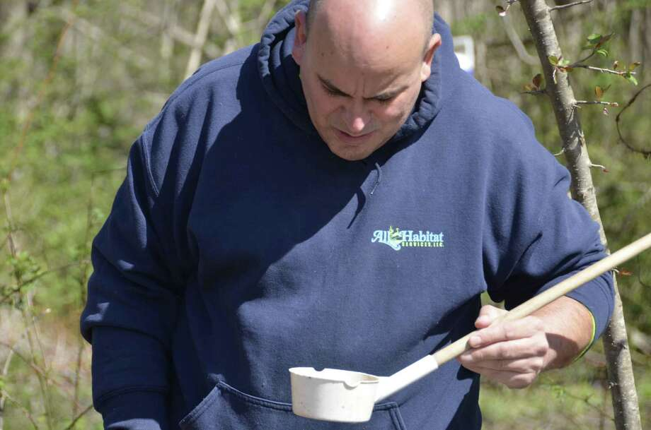 David Roach from All Habitat Services looks at a collection of water in a cup to see if he can spot mosquito larvae during a mosquito control demonstration in Milford, Conn. April 23. Photo: Jill Dion / Hearst Connecticut Media