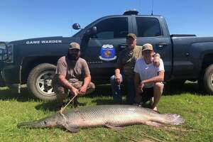 #BigFish