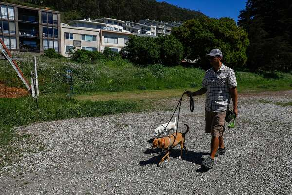 Dog walker Alexander Rejas walks dogs on an undeveloped plot of land at Warren Drive and 7th Street in San Francisco, California, on Tuesday, April 23, 2019.